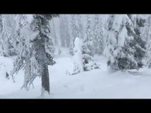 December 28, 2017. Increasing avalanche danger in the Swan Range