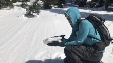 March 22, 2020: Surface conditions in the Northern Whitefish Range